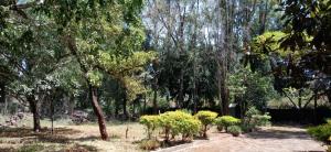 Land for sale ... Karen Nairobi