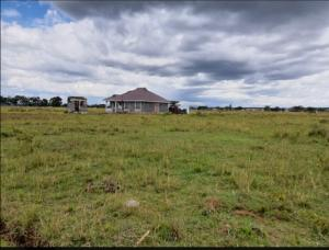 Residential Land for sale The project is located 20 minutes' drive from Nakuru town along the Nakuru-Eldoret highway. The distance from the main Nakuru-Eldoret highway is 900M.    Nakuru Town Nakuru