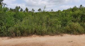 Land for sale Kilifi, Kilifi Kilifi Kilifi