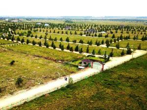 Residential Land for sale Acacia road Kisaju Kitengela