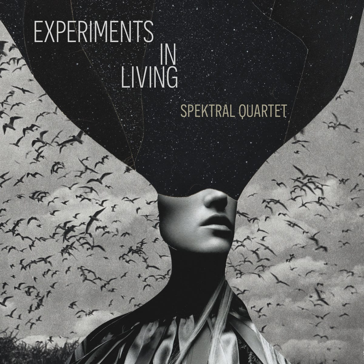 Experiments in Living: Spektral Quartet