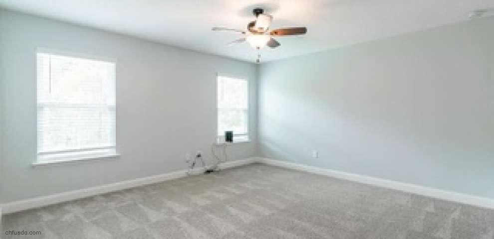 3025 Vianey Pl, Green Cove Spr, FL 32043