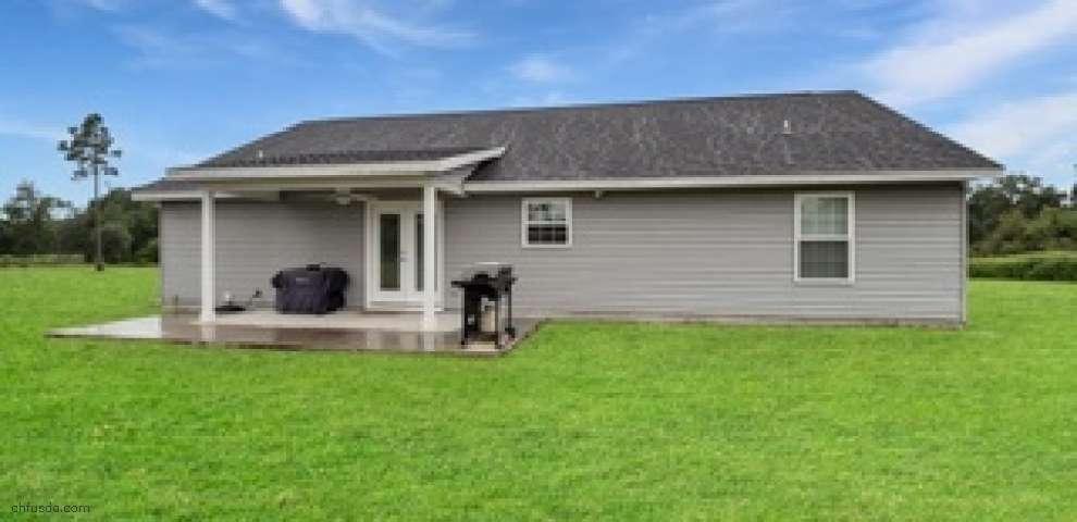 1578 NE Gooseberry St, Lee, FL 32059