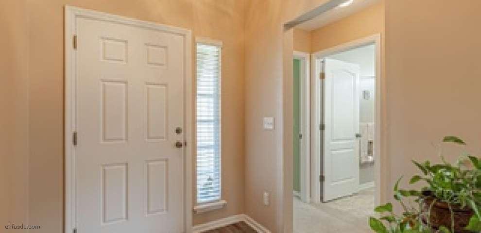 1711 Hollow Glen Dr, Middleburg, FL 32068