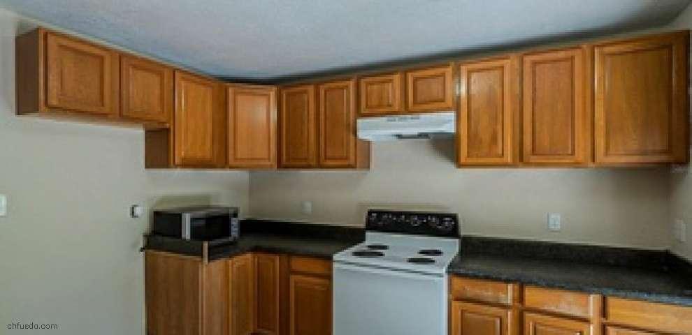 1076 Springbank Ave, Orange City, FL 32763
