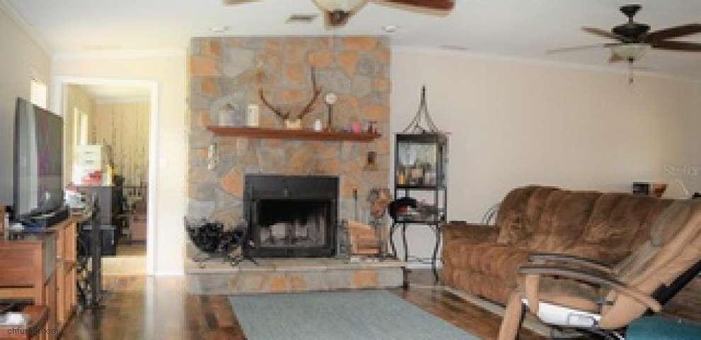 1620 Oak View Farms Rd, Osteen, FL 32764