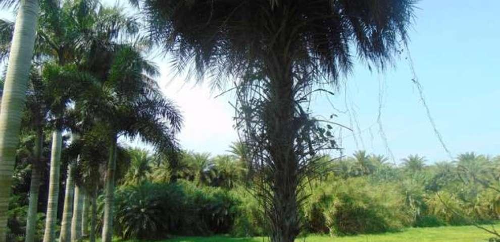 3187 Bacom Point Rd #1, Pahokee, FL 33476