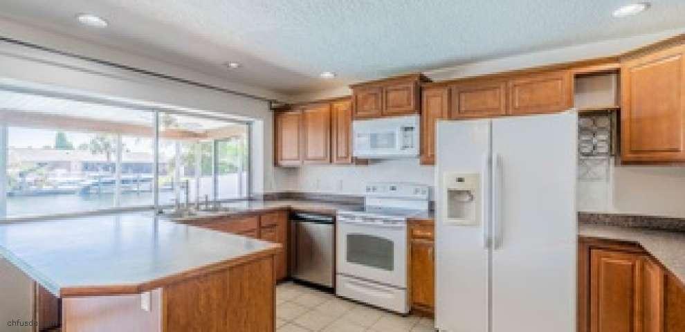 1006 Silver Palm Way, Apollo Beach, FL 33572 - Property Images
