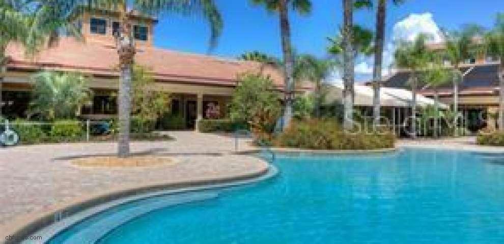 217 Mystic Falls Dr, Apollo Beach, FL 33572 - Property Images