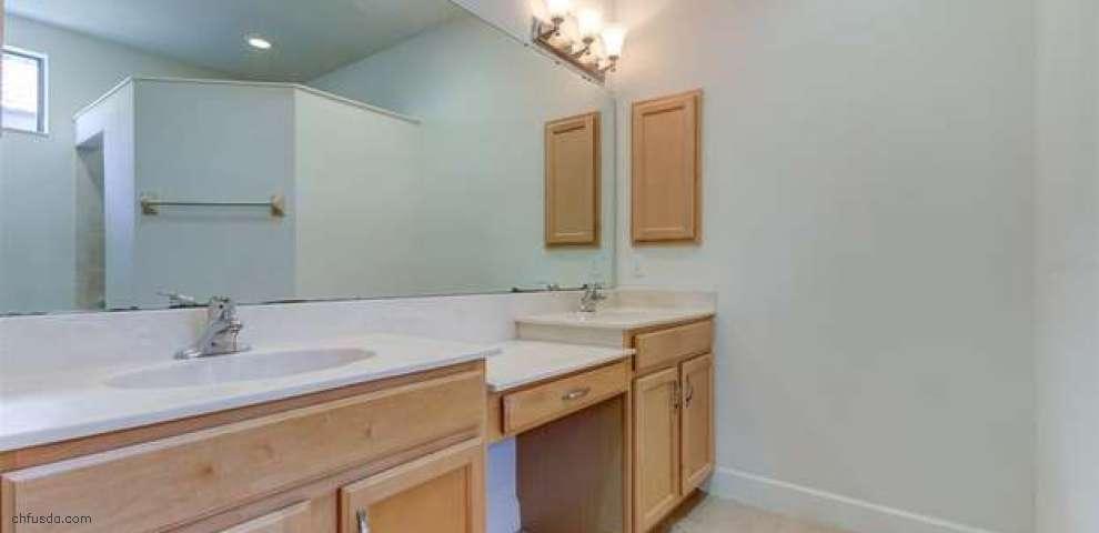 309 Silver Falls Dr, Apollo Beach, FL 33572 - Property Images