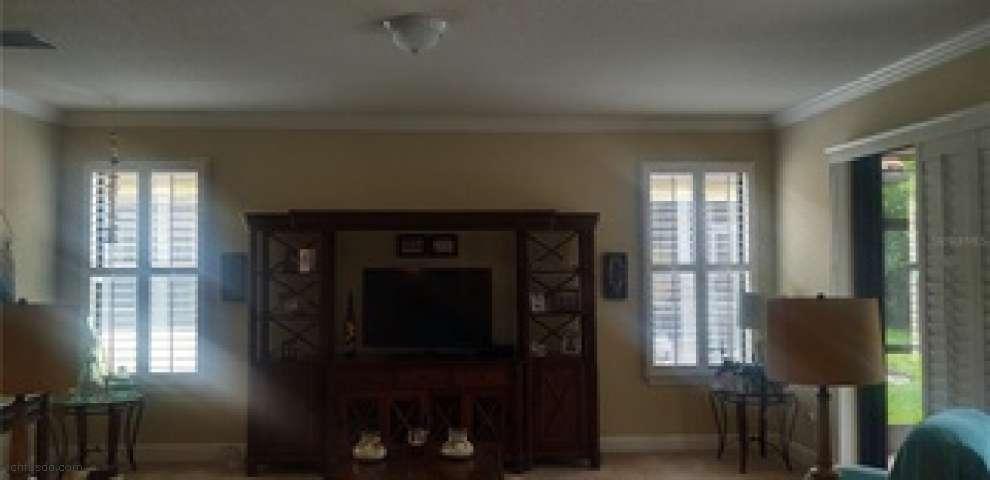 335 Laurel Falls Dr, Apollo Beach, FL 33572 - Property Images