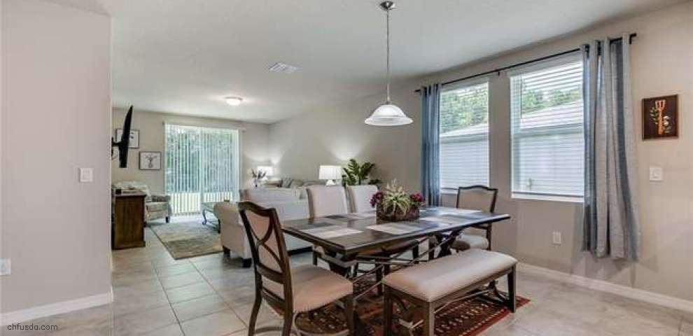 593 Vista Villages Blvd, Davenport, FL 33896