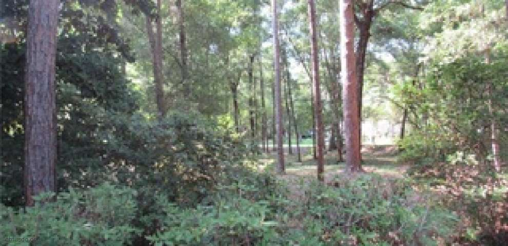 10102 SW 192nd Cir, Dunnellon, FL 34432 - Property Images
