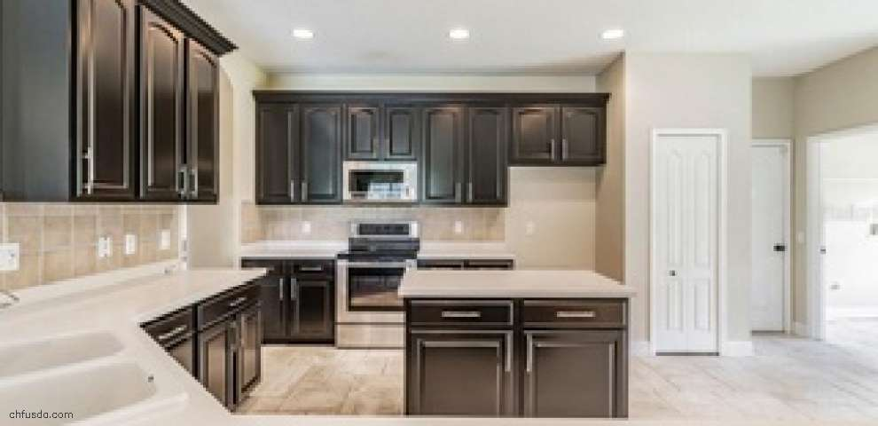 16808 Crested Angus Ln, Spring Hill, FL 34610