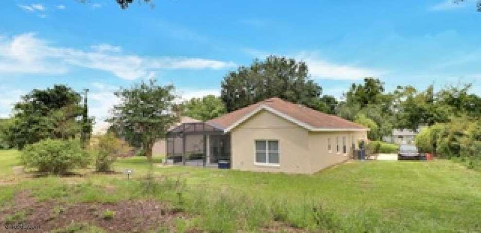 10532 Eagles Bluff Ct, Clermont, FL 34711