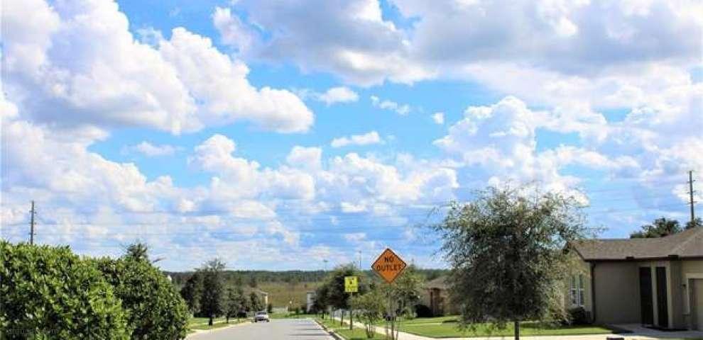 6376 Green Bud Dr, Groveland, FL 34736
