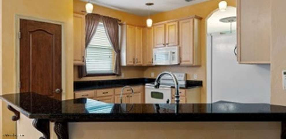 3307 Primrose Willow Dr, Harmony, FL 34773 - Property Images