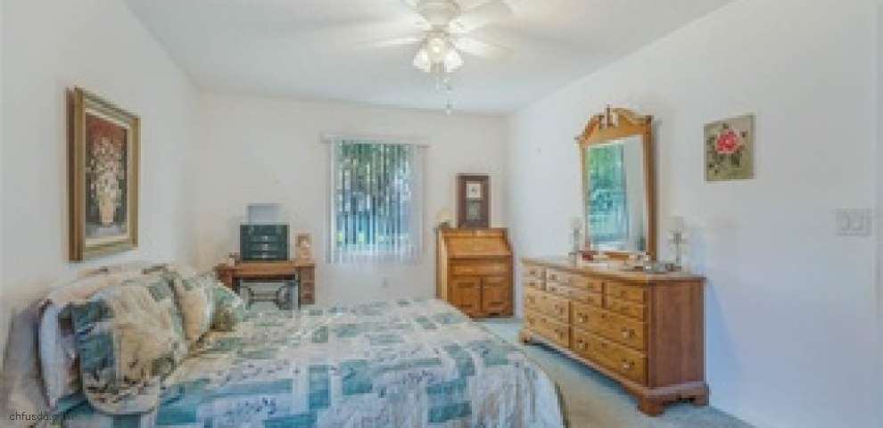 1038 Scotch Pine Ct, Leesburg, FL 34788