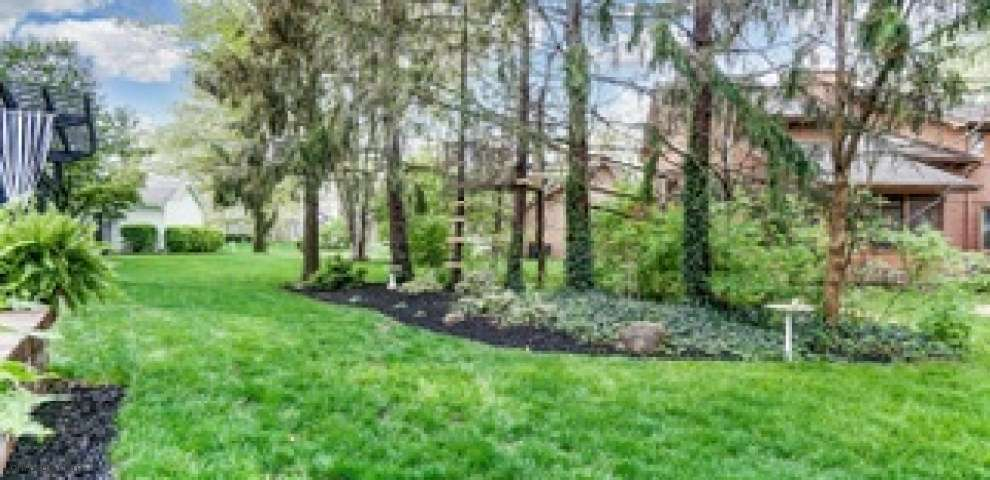 297 Tallowwood Dr, Westerville, OH 43081 - Property Images