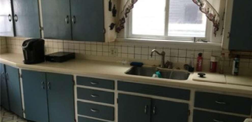 359 Liberty St, Conneaut, OH 44030 - Property Images