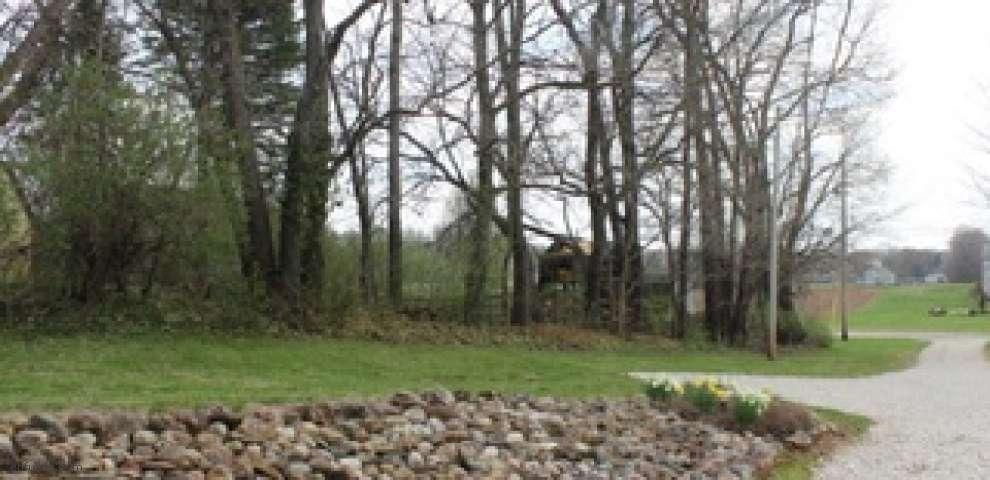 1105 Apple Ridge Rd, Clinton, OH 44216