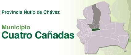 Gobierno Autonomo Municipal De Cuatro Canadas