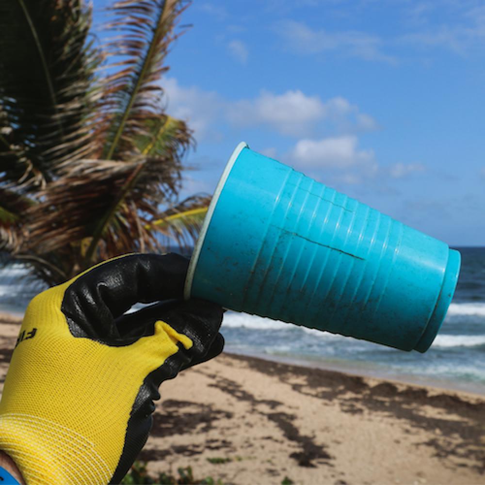 beach-clean