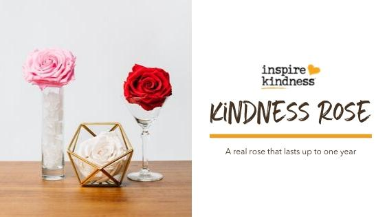 Kindness Rose Lasts 1 year
