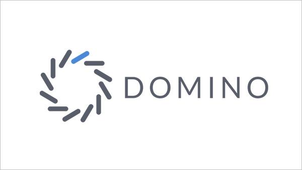 Domino Data Labs