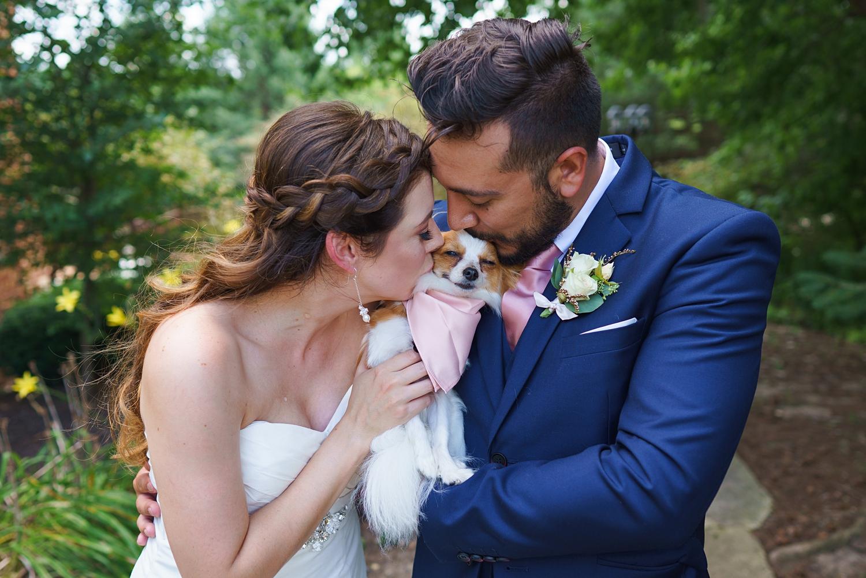 wedding photos with pets