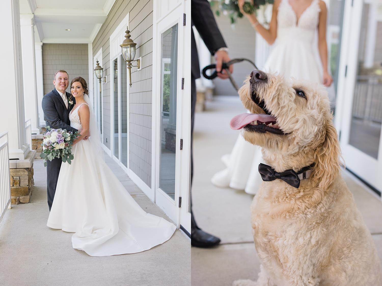 dog groomsmen