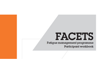 FACETS Workbook Image. Source: Image created by the Authors; Copyright: The Authors; URL: http://formative.jmir.org/2019/2/e10951/; License: Creative Commons Attribution (CC-BY).