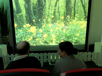 A test session using a prototype of SENSE-GARDEN. Source: Image created by the Authors; Copyright: J Artur Serrano; URL: http://www.researchprotocols.org/2019/8/e14096/; License: Creative Commons Attribution (CC-BY).
