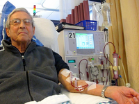 Patient receiving dialysis. Source: Wikimedia Commons; Copyright: Anna Frodesiak; URL: https://commons.wikimedia.org/wiki/File:Patient_receiving_dialysis_03.jpg; License: Public Domain (CC0).