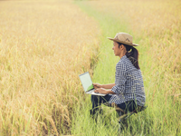 Source: Freepik; Copyright: jcomp; URL: https://www.freepik.com/free-photo/farmer-rice-field-with-laptop_3738129.htm; License: Licensed by JMIR.