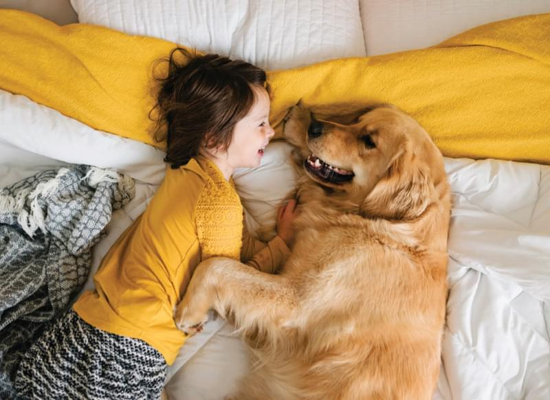 Kid with dog on bed