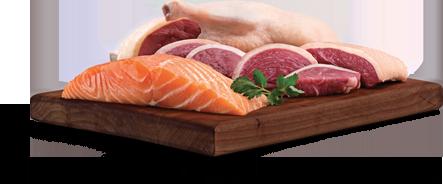 Duck + Salmon