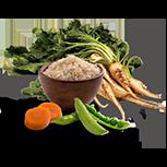 Peas, Brown Rice, Beet Pulp & Carrots