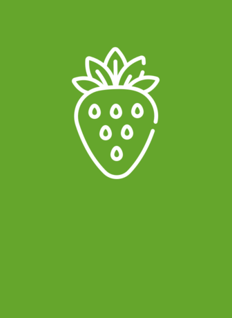 Events and Presentations - Green Strawberry icon