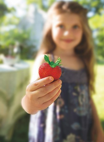 Close up of girl holding strawberry