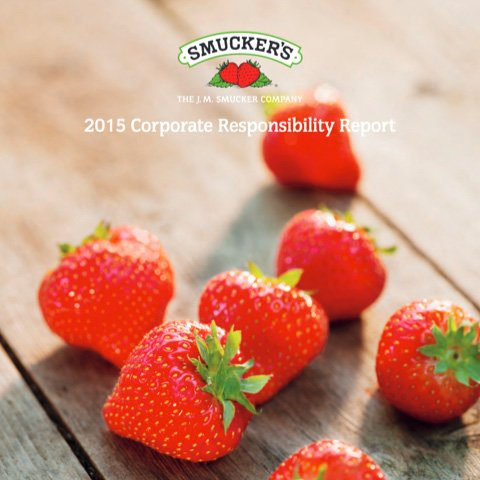 Corporate Responsibility Report Cover 2015