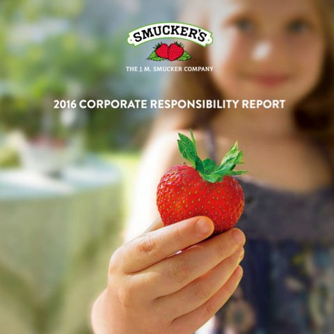 Corporate Responsibility Report Cover 2016