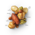 Sea Salt Bean + Nut Snack Mix