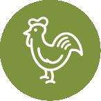 U.S. farm-raised chicken is the #1 ingredient