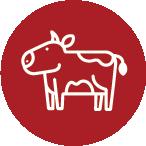U.S. farm-raised beef is the #1 ingredient