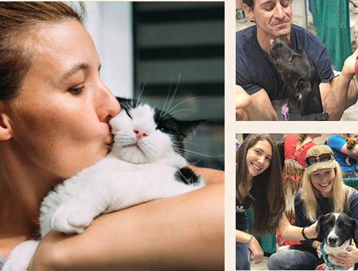 a collage of people with animals
