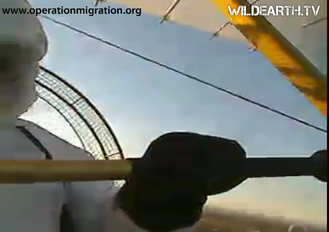 Ultralight pilot holds onto steering bar.