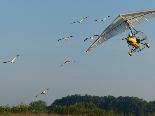 Class of 2013 flies with aircraft.