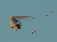 The Super Six flying with the aircraft
