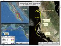 Varvara's travels Feb. 5-12, 2012